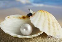 了解珍珠粉用法 DIY淡斑美白面膜