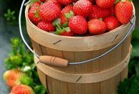 美容食谱:女性必吃10种美白水果