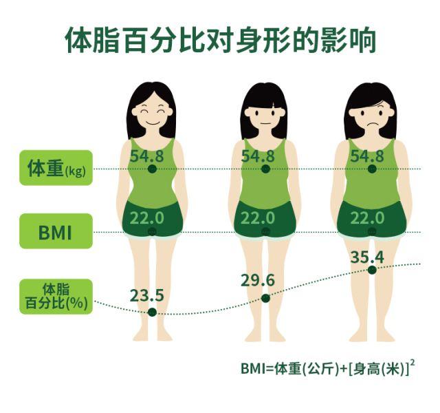 脂肪大战—减脂篇